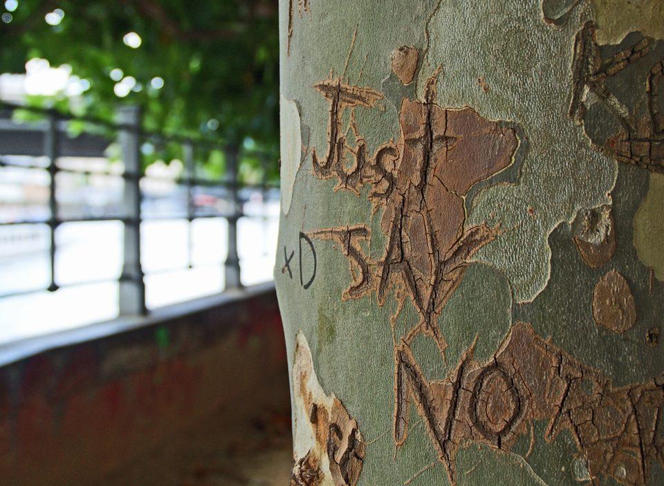 Atrévete a decir no, no y no